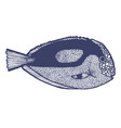 surgeonfish in hand drawn style vector image vector image
