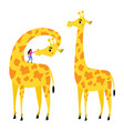 with giraffe and sitting friendly young woman set vector image