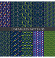 set of flower seamless pattern vector image