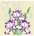 Background with white blue irises vector image vector image