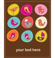 collection of cute decorative birds greeting card vector image