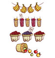 farmers market fruits collection vector image