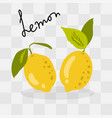 lemons on transparent background vector image