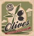 Retro olive poster design vector image