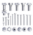 bolts screws metal pins with different head slot vector image