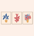 botanical wall art collection exotic plants lily
