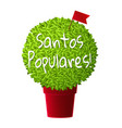 bright realistic manjerico plant in red pot vector image