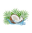 realistic coconut in water splash palm vector image vector image