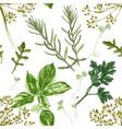 seamless pattern with hand drawn herbs vector image