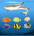 set of underwater fish vector image vector image