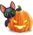 cartoon black cat holding halloween pumpkin vector image vector image