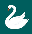 elegant white swan isolated on dark green vector image vector image