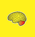 interesting and cool brain icon vector image