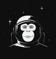 monkey astronaut in space vector image vector image