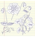 Notebook with bindweed and flowers vector image vector image