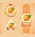 package labels with apricot vector image