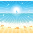 Sand beach at sunset time vector image vector image