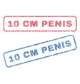 10 cm penis textile stamps vector image vector image