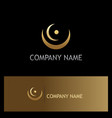 abstract curve round point gold logo vector image vector image