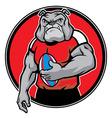 bulldog as rugfootball player vector image vector image
