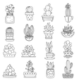 Cactus Line Icons Set vector image