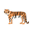 tiger isolated on white background gorgeous vector image