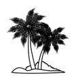 tree palms nature vector image vector image