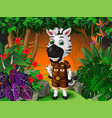 zebra in forest with tropical plants cartoon vector image vector image