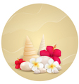 round sand background with flowers vector image
