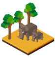 3d design for two elephants in forest vector image vector image