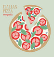 colorful of italian pizza margarita vector image