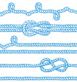 Engraved ropes and knots vector image vector image