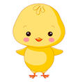 Farm animals Chick vector image vector image