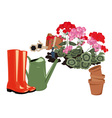 flowers in the garden rubber boots and watering vector image