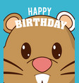 hamster cute birthday card vector image vector image