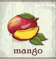 Hand drawing of mango Fresh fruit sketch vector image vector image