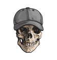 hand drawn human skull wearing grey colored vector image vector image
