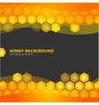 Honeycomb with honey on the black background vector image