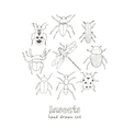 set doodle sketch bugs and beetles vector image vector image