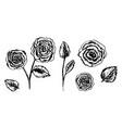set hand drawn black sketch ink rose flowers vector image vector image