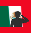 solder silhouette on blur background with mexico vector image