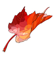 autumn maple leaf vector image vector image