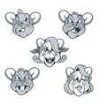 Five rat characters in cartoon style with