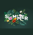 summer sign vector image vector image