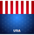 USA flag pattern background vector image vector image