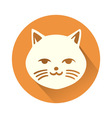 White cat symbol vector image