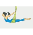 Aerial Yoga Aero Yoga Anti-gravity Yoga vector image
