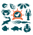 animals on seafood vector image
