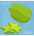 Carambola icon vector image vector image