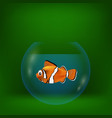 colorful with sea clown fish vector image